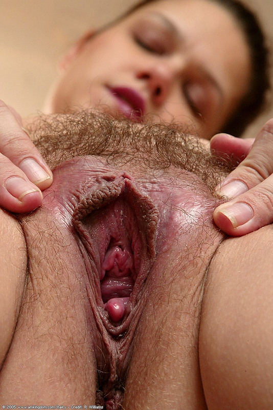 Homemade penis in hairy pussy close up