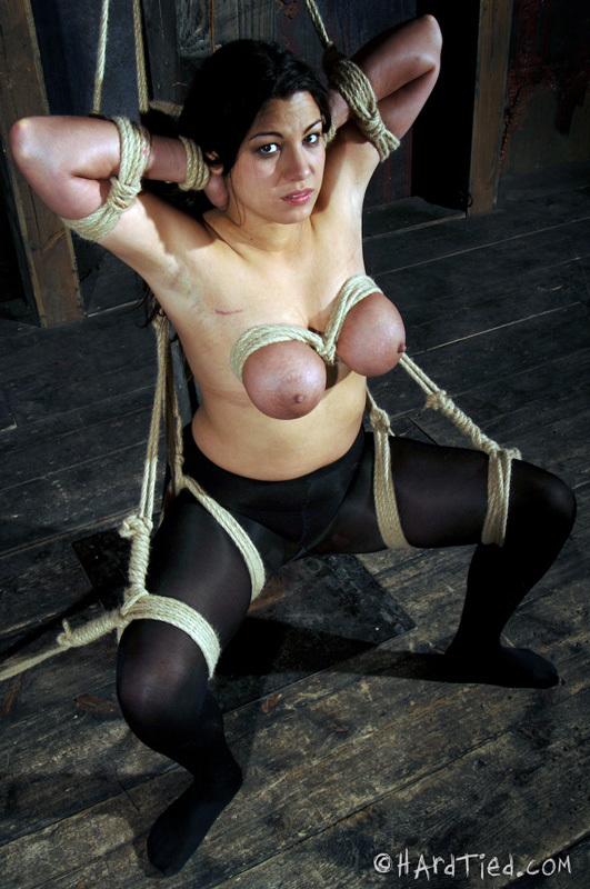 ...; BDSM